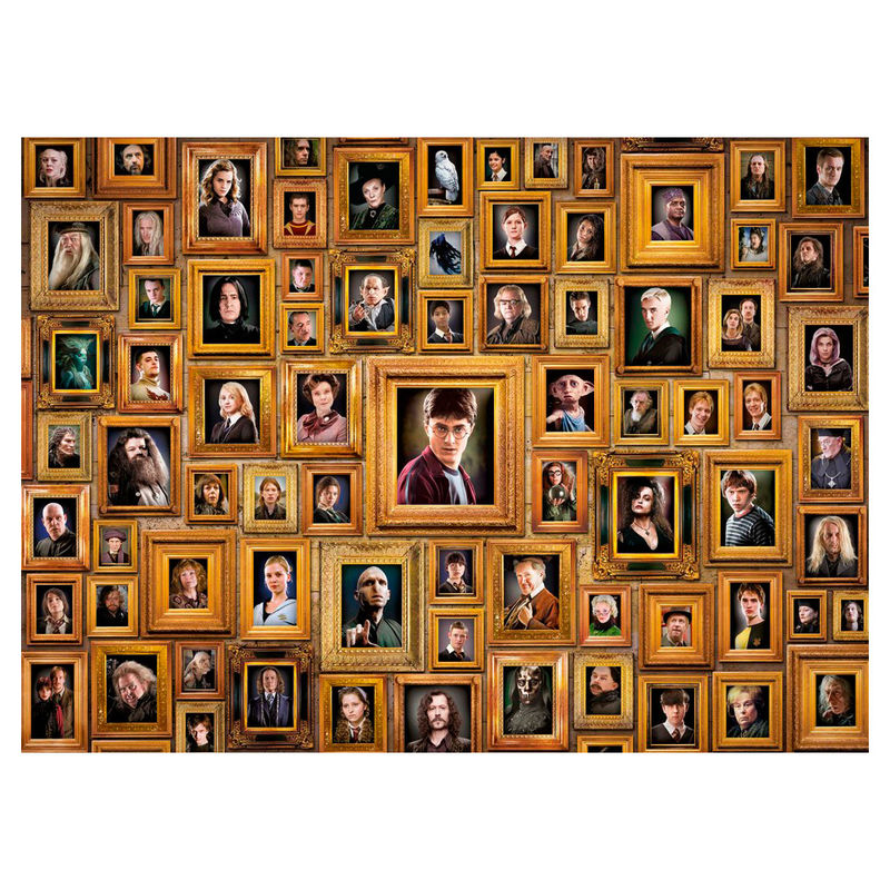 Puzzle Imposible Retratos Harry Potter 1000pcs