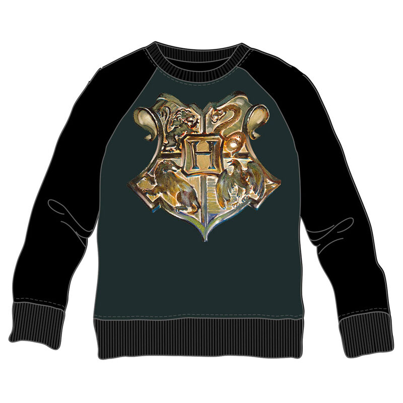 Harry Potter Hogwarts adult sweatshirt
