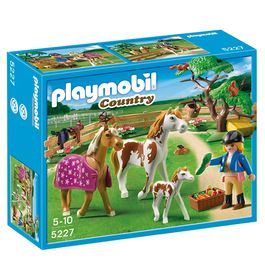 Playmobil Country Paddock with horses and Pony